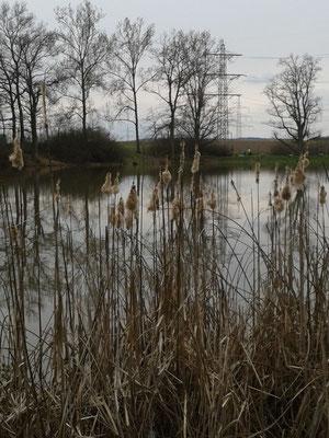 Renninger See