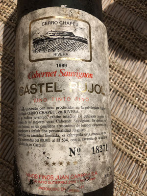 cabernet sauvignon 1989 castel pujol: very nice wine, dried fruit: figs, plums, fine herbs, tabaco ; melted in the taste, balanced, A
