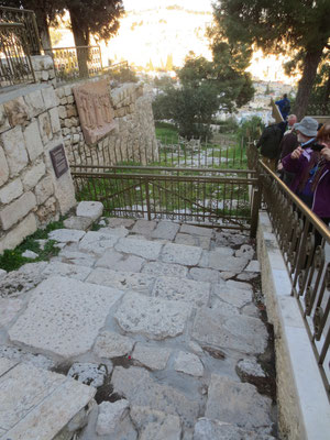Ancient path from temple mount to the Mount of Olives