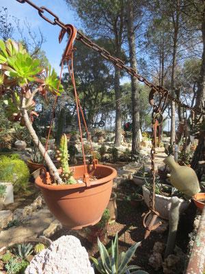 Keren Carmel garden