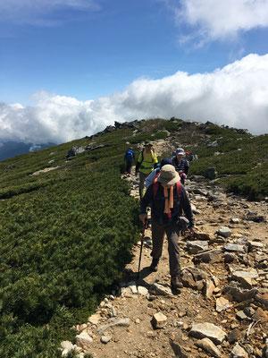 森林限界を超えた登山道