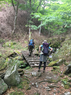 登山道を歩く