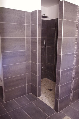 madras room, the walk-in shower
