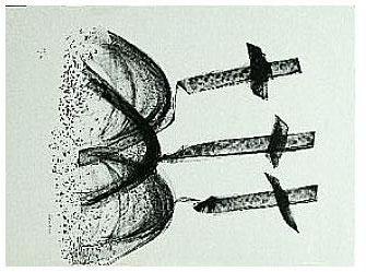3.- Buscando mis amores,  Litografía, 49  x 35 cm., soporte 49 x 35 cm.