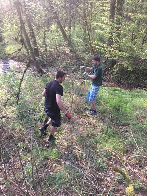Jugend beim Müll sammeln