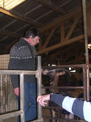 petite explication d'Eric en compagnie de mesdames les chèvres.