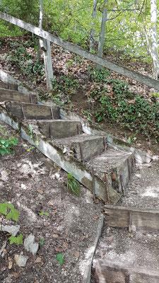 auch diese Treppe erscheint wieder in sabuerem Glanz