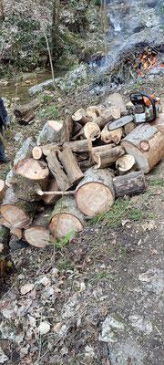 Holzvorrat in üppiger Menge, alles aus dem Bach geholt und zersägt. Wartet nun, bis ein Unterstand wieder leer ist