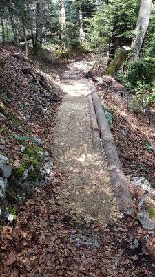 Endresultat Baustelle 3: sanierter Weg zum Chänzeli