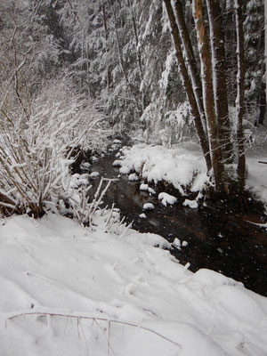 Die Schneelandschaft hingegen ist wunderschön.