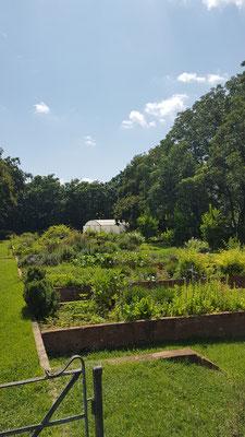 Hauseigener Gemüse-und Krätergarten