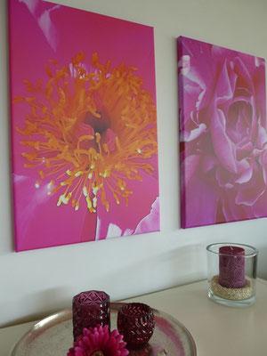 & Pink Hurrican