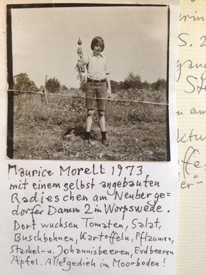 Vater schickt mir heute was. Als Teen hatte ich schon einen Gemüsegarten. Nach einem Ausflug in die konventionelle Landwirtschaft ging ich später nach England zur bio-dyn. Mortimer Hill Farm in Berkshire. Obst- und Gemüseverkauf, Erntearbeit.
