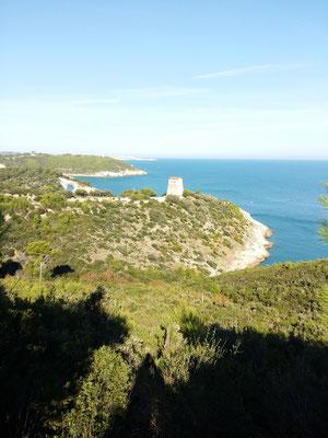 panorama verso Torre di San Felice