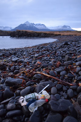 beach clean, East Fjords, Iceland