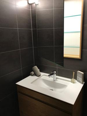 Lavabo mit Spiegelschrank in Wand eingelassen