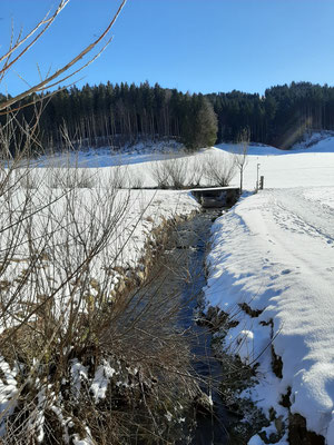 Winter Hiking Trail Gontenbad - Jakobsbbad