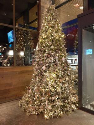 Christmas Tree Grischa Davos