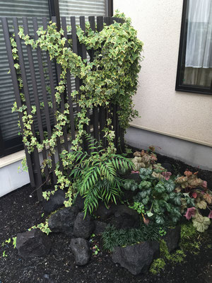 坪庭 溶岩石 広島