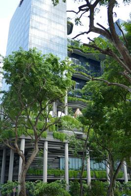 Wolkenkratzer und Dschungel - Singapur - travelumdiewelt.de