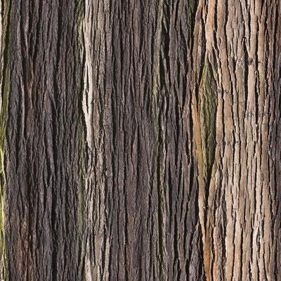GFK Baumrindenwand Amazon natur