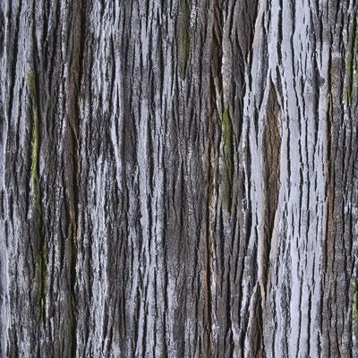 GFK Baumrindenwand Amazon carmin