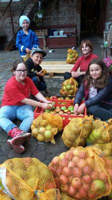Die Äpfel mussten vor dem pressen gewaschen werden.