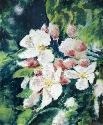 Obstblüte1 2017, Acryl auf Papier 40x50, vergeben