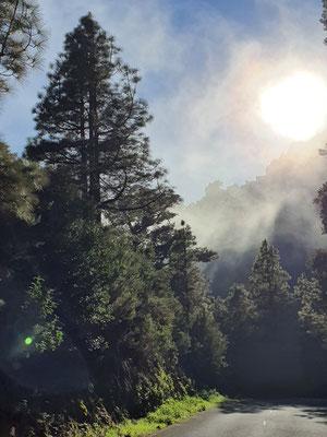 Nordosten La Palma