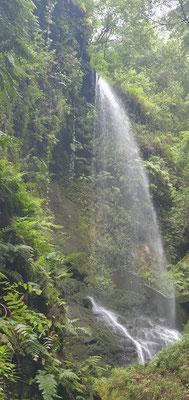 Wasserfall von Los Tilos