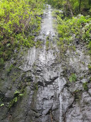 Wasserfall im Lobeerwald von Los Tilos