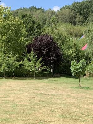 Sonnenlandpark Lichtenau / Sachen