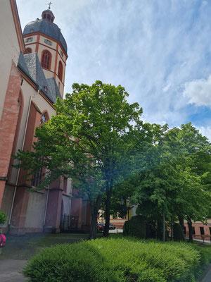 Sankt Stephan Mainz