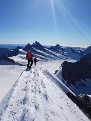 Auf Messer's Schneide: Auf dem Firngrat zum Gipfel des Mönch