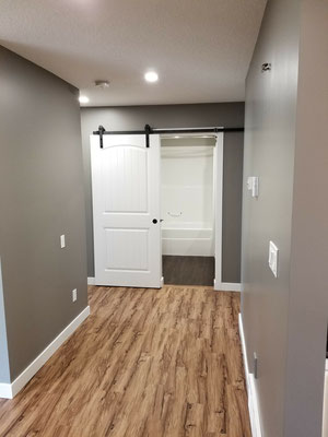 Home renovation barn door