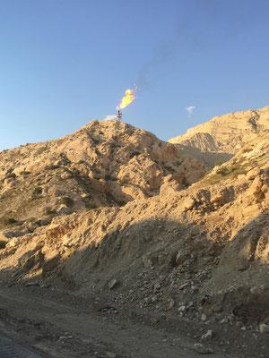 unterwegs entlang dem persischen Golf