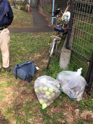 入り口に打ち捨てられたゴミ袋とゴミと化したテニスボール 観察の森