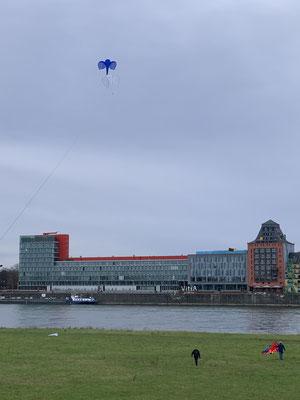 Einzelne Versuche bei den Windbedingungen zu fliegen, hauptsächlich von den  Merhleiner Piloten.