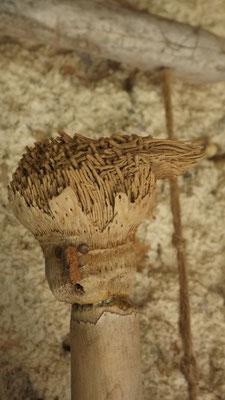 Sculpture en bois flotté Katia panfiloff.