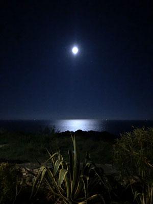 Im Mondschein.