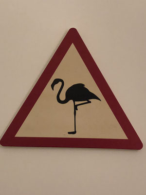 Vorsicht Flamingos!