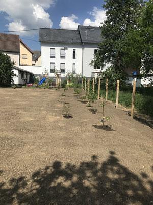 Gartengestaltung in Taunusstein