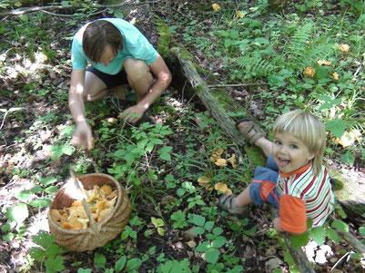 尤金叔叔和路許查採集野生蘑菇