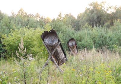 森林裡的蜂箱