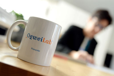 Site ogweilab - Change Management et coaching