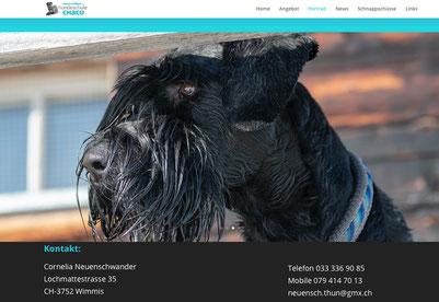 """Hundeschule Chaco - Thun/Gwatt """"Schnauzererfahrene Hundetrainerin mit Herz und Verstand."""""""