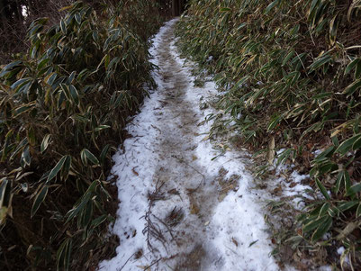 雪が踏み固められ凍結した登山道