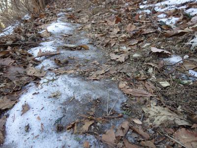 踏み固められた雪