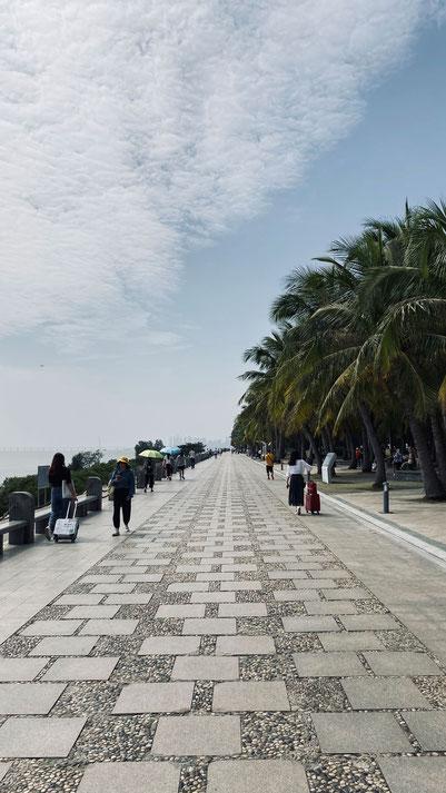 Promenadenspaziergang  im Mangrove Nature Reserve