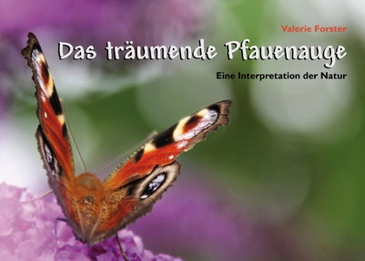 Valerie Forster, Buch, Books on Demand, Cover, Das träumende Pfauenauge